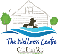 The Wellness Centre logo